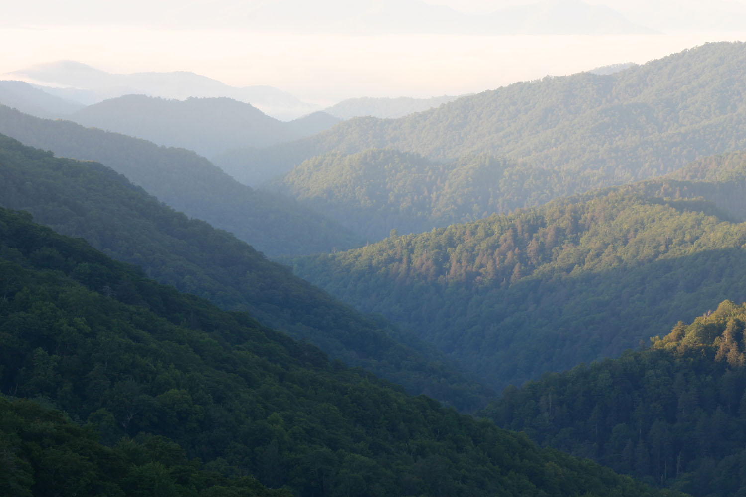 degradation of appalachian mountains essay In the united states, poor white (or poor whites of the south for clarity) is the historical classification for an american sociocultural group, of generally western and/or northern european descent, with origins in the southern united states and in appalachia.